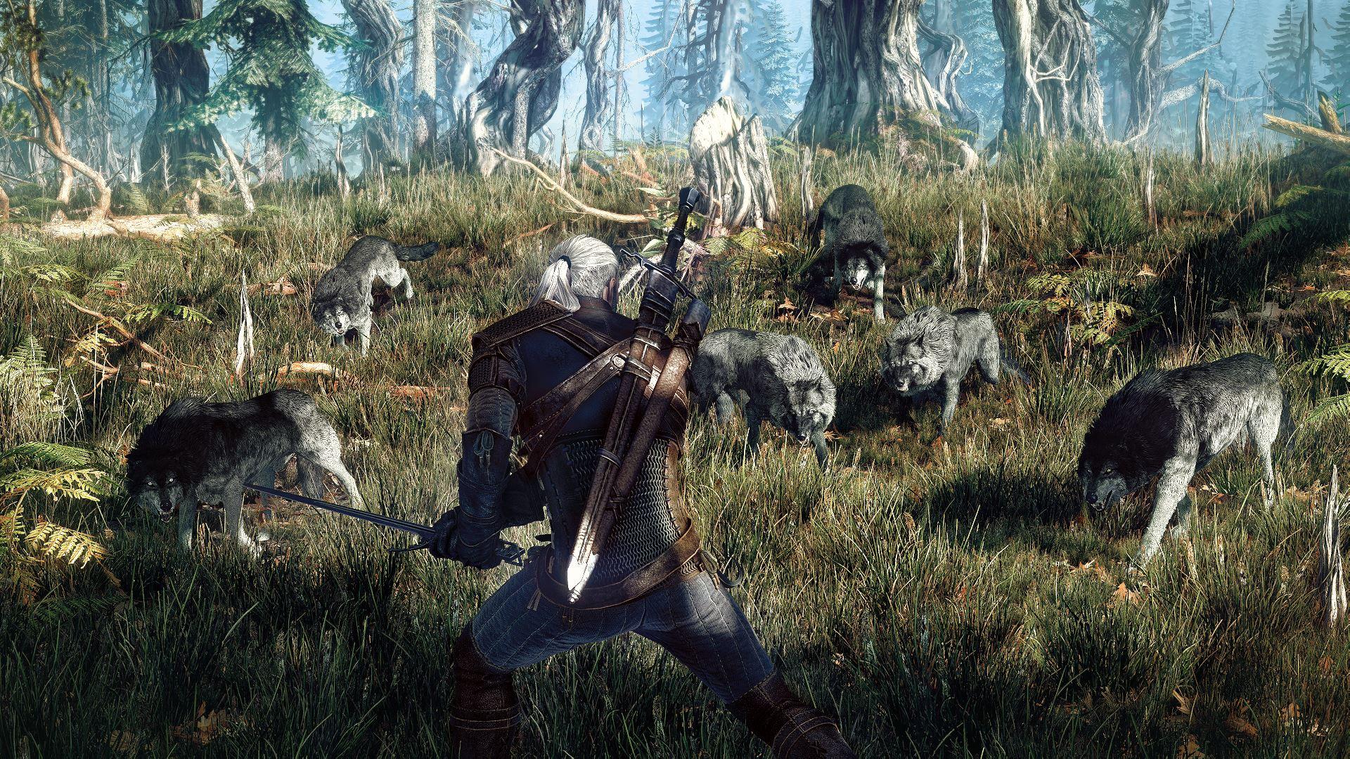 The-Witcher-3-Wild-Hunt_2013_06-25-13_001.jpg