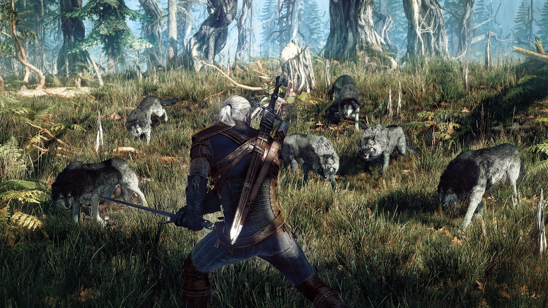 The-Witcher-3-Wild-Hunt_2013_06-25-13_001.jpg