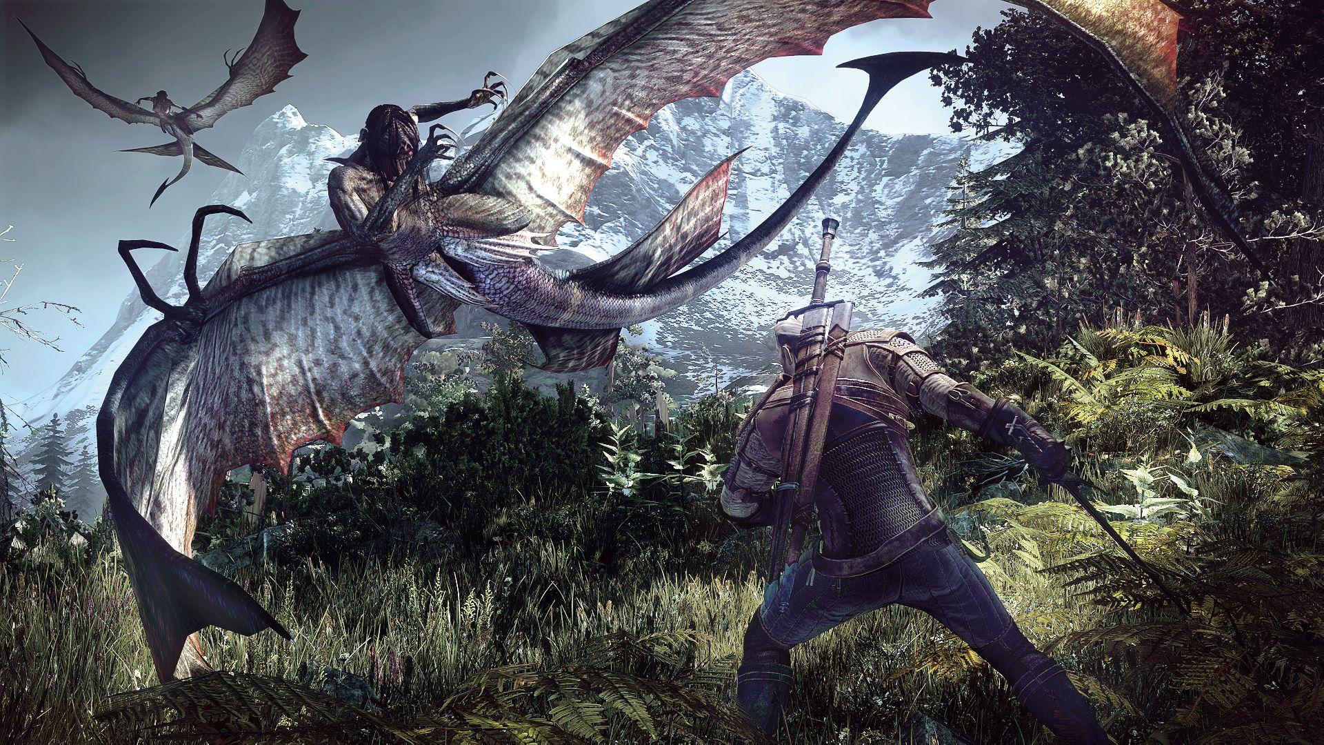 The-Witcher-3-Wild-Hunt_2013_06-25-13_004.jpg