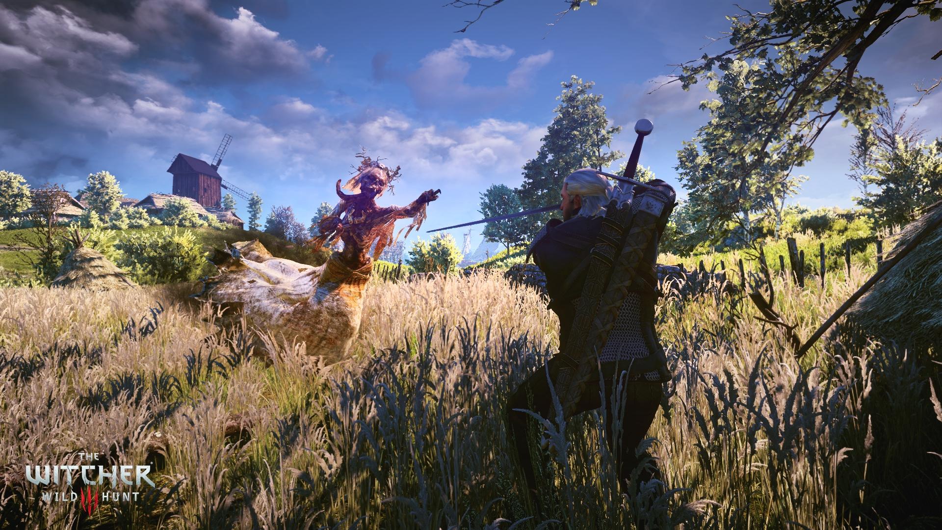 1402005472-the-witcher-3-wild-hunt-3.jpg